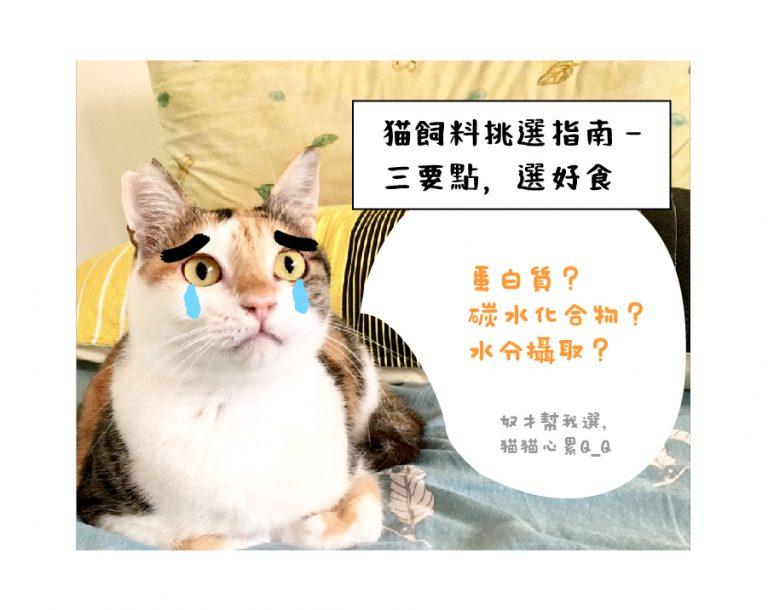 貓飼料挑選