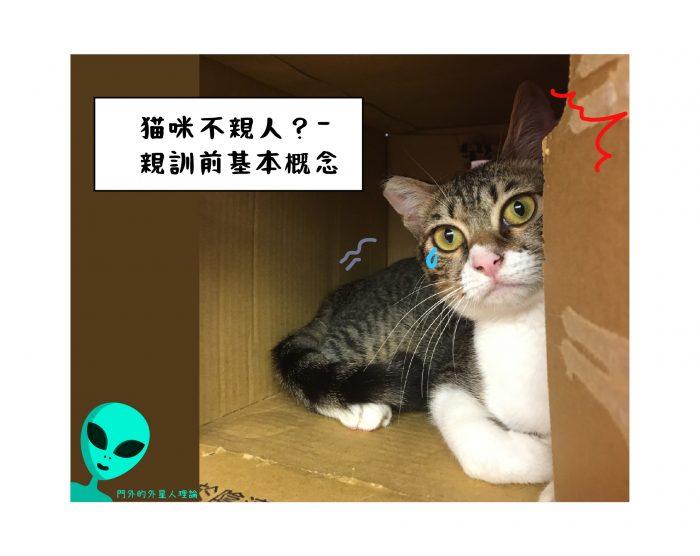 貓咪親訓上-基本概念