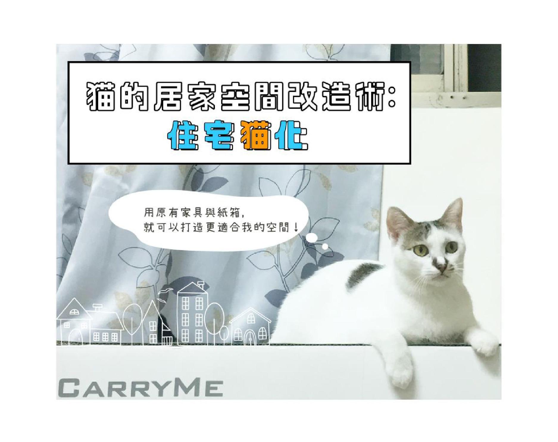 貓的居家空間改造術